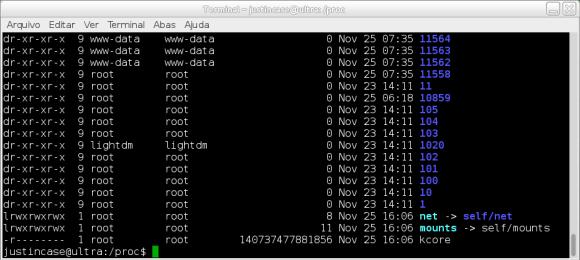 captura de tela do comando ls -lh /proc (by Elias Praciano)