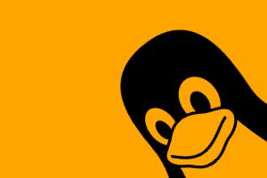 Linux Tux in orange background