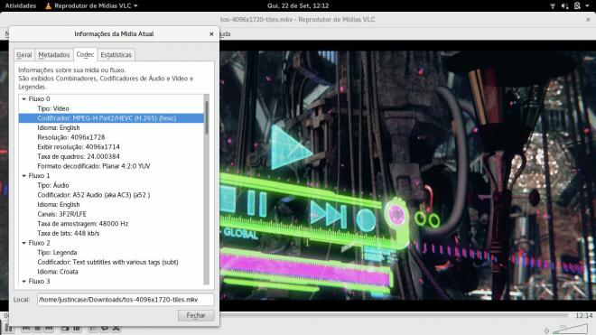 linux vlc player h.265 codec
