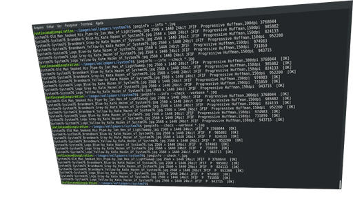 linux jpeginfo