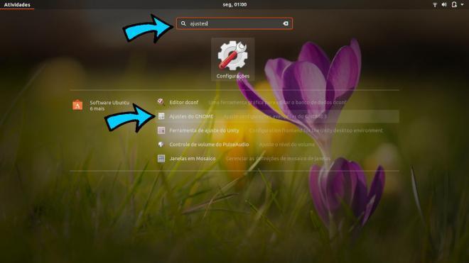 Ubuntu ajustes do gnome