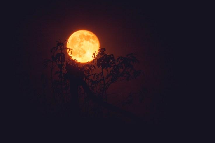 Honey moon over Sacramento