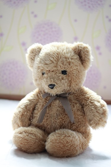 Teddy. Given to me by papa. My pillow, my favorite hugger, my source of warmth.