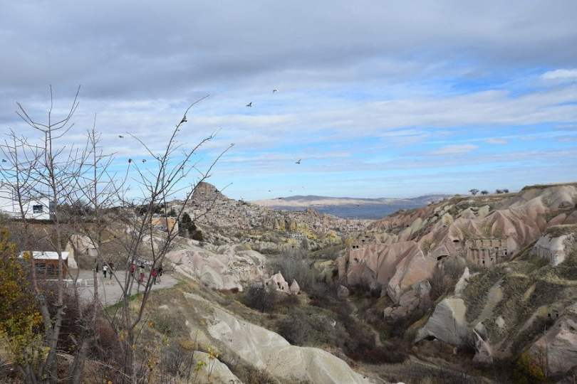 Pigeon_valley