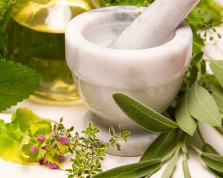 hierbas para curar herpes