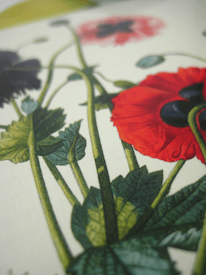 wedding invitation - poppies detail