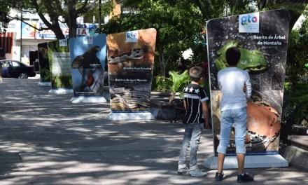 Conmemoran semana de Conservación del Cerro del Palenque