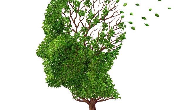 El Rincón del IMSS: ¿Qué es el Alzheimer?