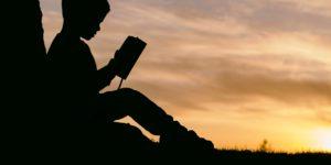 Странстващият читател – Гленда Норки