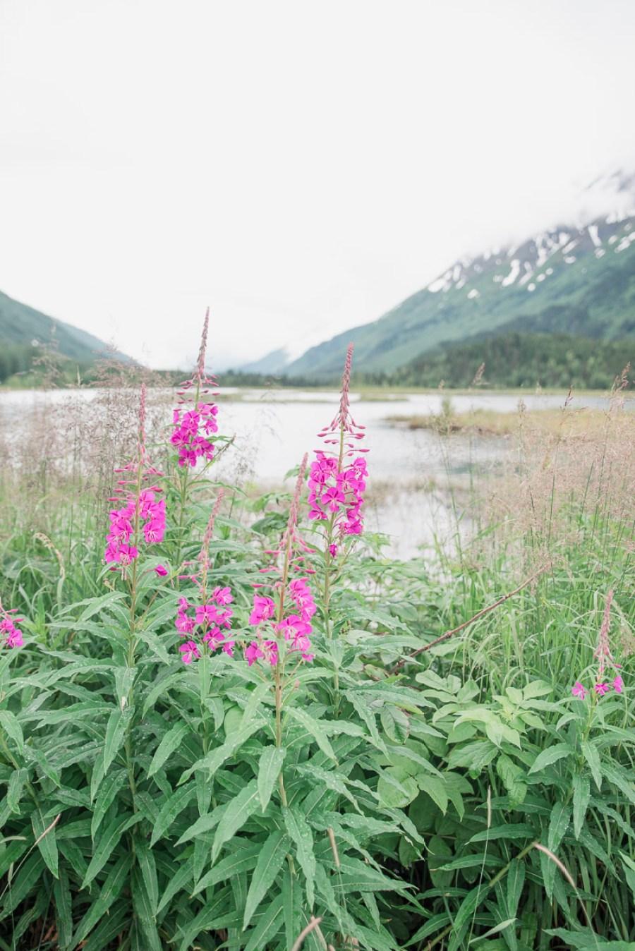 alaska-anchorage-area-elinlights-photography-20