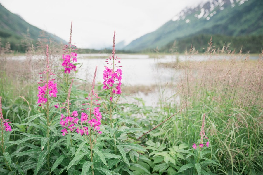 alaska-anchorage-area-elinlights-photography-21
