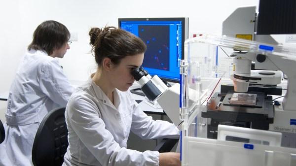 investigador científico
