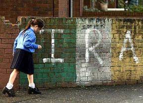 Sinn Fein gana las elecciones en Irlanda, Las diferencias entre ETA y el IRA