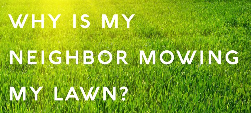 Why Is My Neighbor Mowing My Lawn?