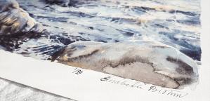 "Elisabeth Biström gicléetryck av akvarellen ""Nattsol på havet"""