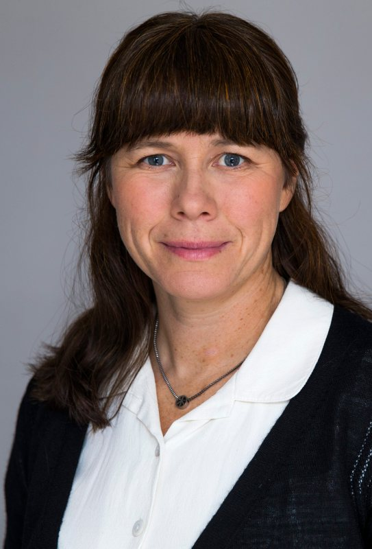 Åsa Romson Foto: Regeringskansliet