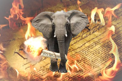 13 2015.02.12 GOP Elephant torching US Constitution