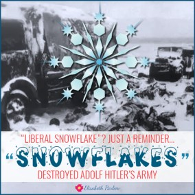 2017.04.24 - Liberal Snowflakes
