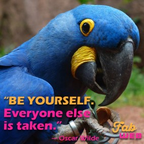Fabweb meme - Be yourself, everyone else is taken. - Oscar Wilde.