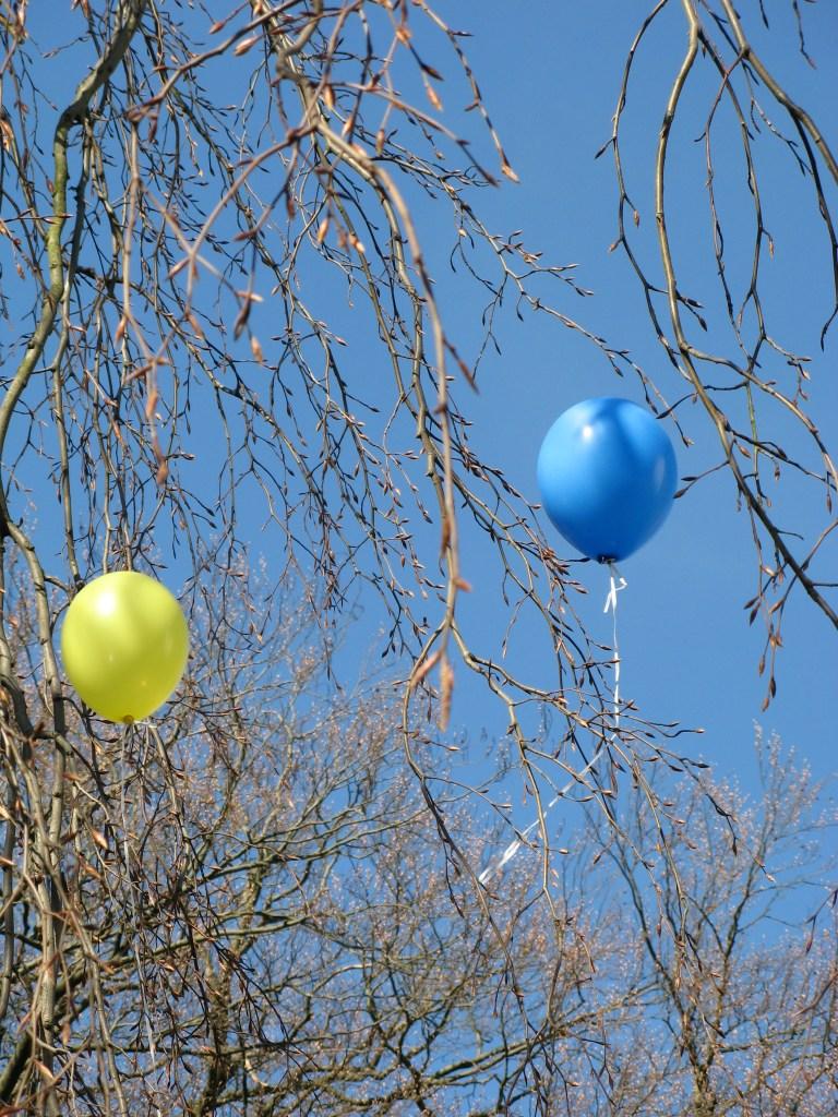 Ballonnen in de boom