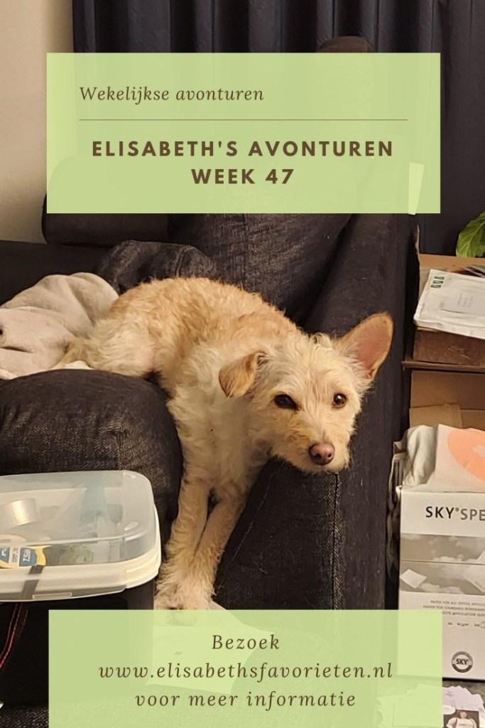 Elisabeth's avonturen week 47