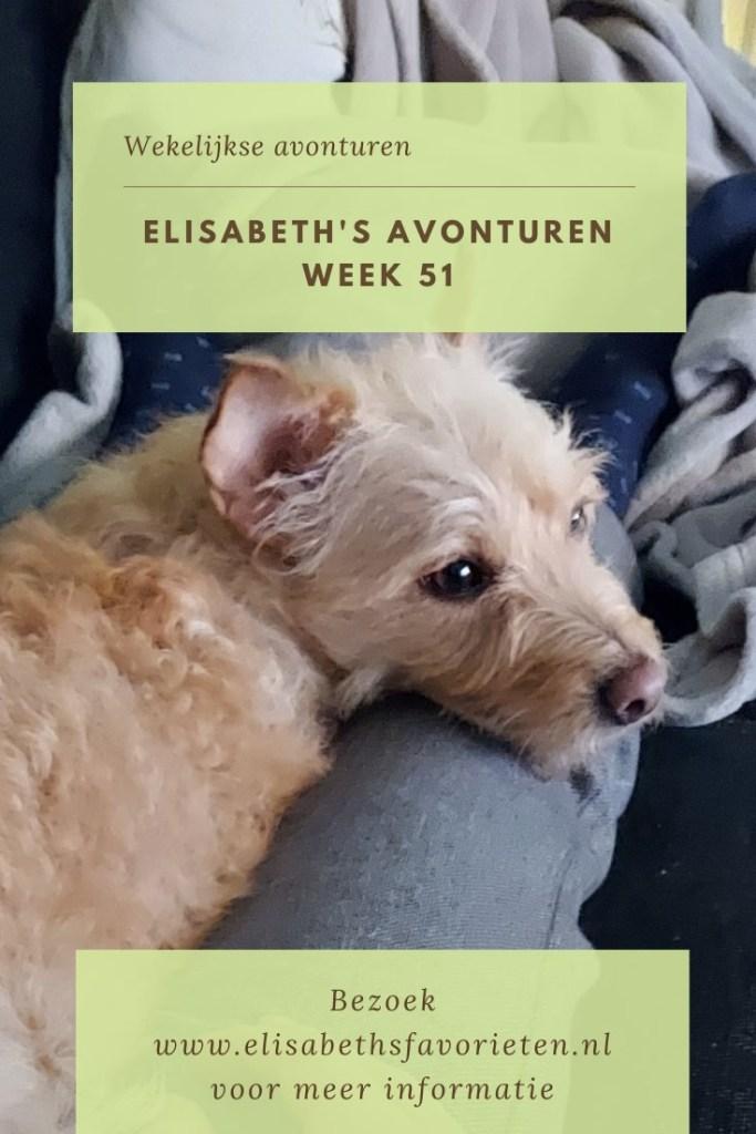 Elisabeth's avonturen week 51