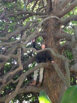 Kathleen-in-Magnolia-tree