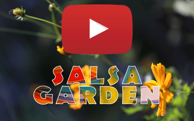 The first OFFICIAL MUSIC VIDEO My Salsa Garden
