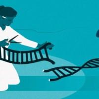 Cette volonté de réécrire le code de la vie a-t-elle été inscrite dans notre ADN?