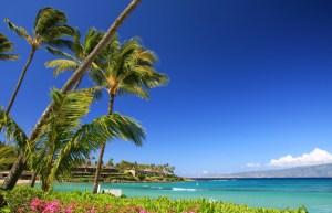 Referral Rewards - All Inclusive Resort Cabo San Lucas, Mexico| Elite Roofing Colorado