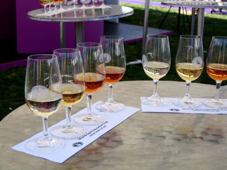 verre de vin cours oenologie