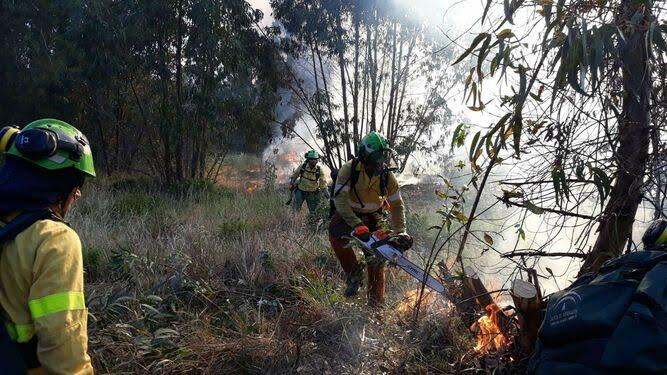 11 medios aéreos y 80 efectivos trabajan en fuego de Cabezas Rubias (Huelva)