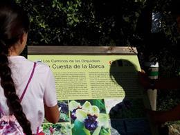 La Diputación edita una guía informativa sobre los 45 tipos de orquídeas que pueden verse en la provincia