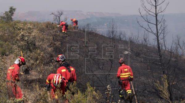 Declarado un incendio forestal en Ojén