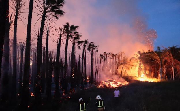 Absuelto del incendio de  una plantación de palmeras por falta de pruebas