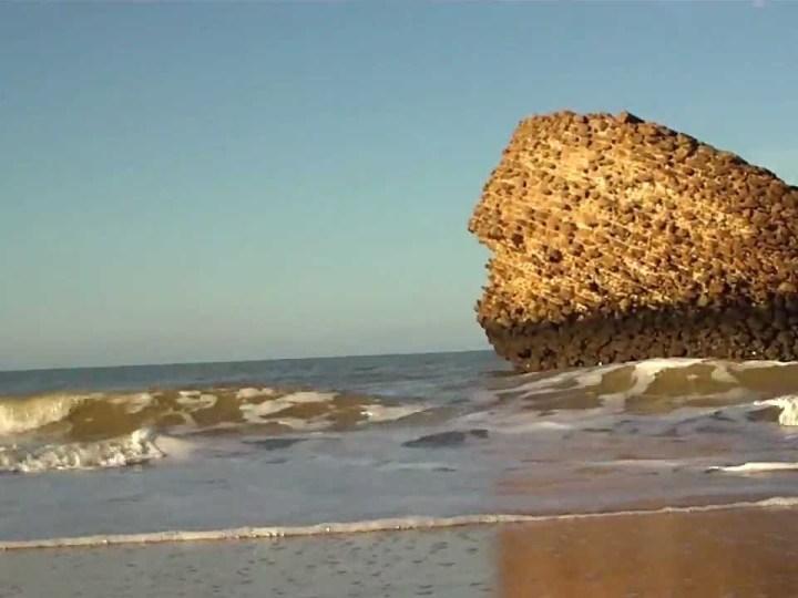 Permitido el baño en todas las playas de Huelva salvo Matalascañas
