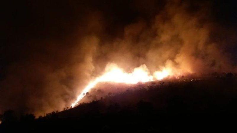 Dos investigados por un incendio forestal