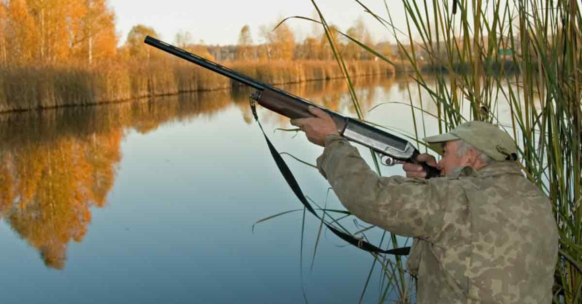How to Hunt Ducks Never Infringe on Another Hunter's Space