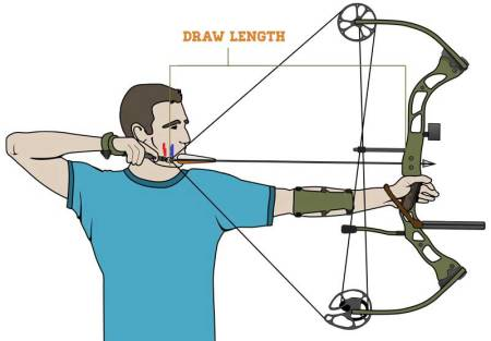 Compound Bows Draw Length