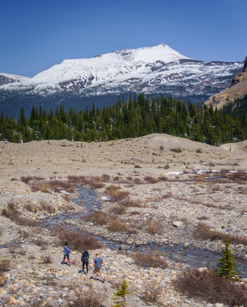 Bow lake hike