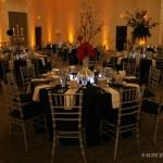 White Elite Entertainment Elite Bridal