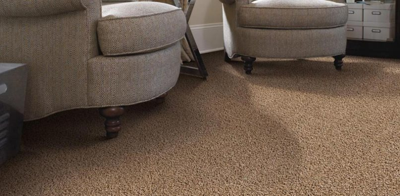 Carpet Cleaning In Pensacola Fl Www Resnooze Com