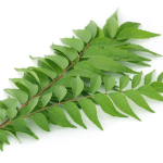 curry leaves health benefits