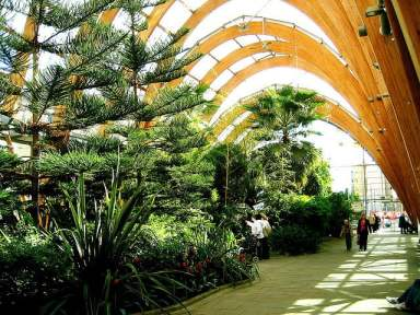 Winter gardens in Sheffield