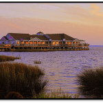 Visit the Outer Banks:  Spring in Secluded Duck, NC