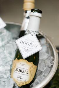 korbel champagne toast - roundhouse wedding