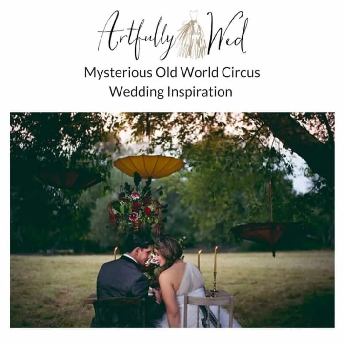 artfully wed circus shoot featured