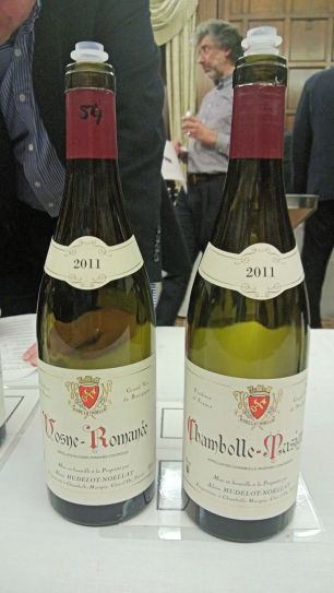 Hudelot-Noellat Vosne and Chambolle
