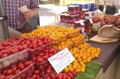 Tomatoes again