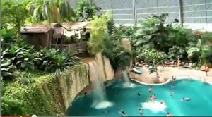 A tropical island?